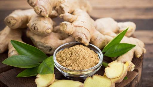 Ginger Plant